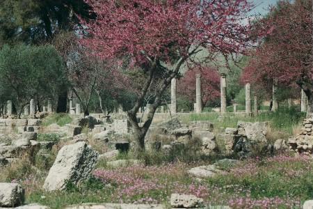 Olympia in der Landschaft Elis